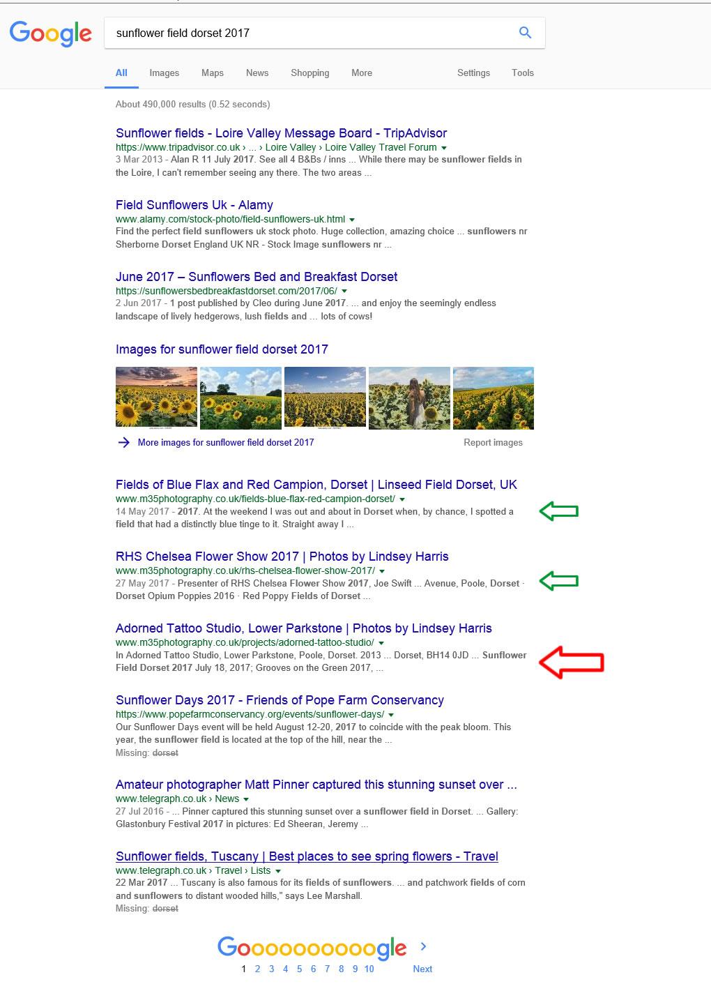 Google screenshot of sunflower search