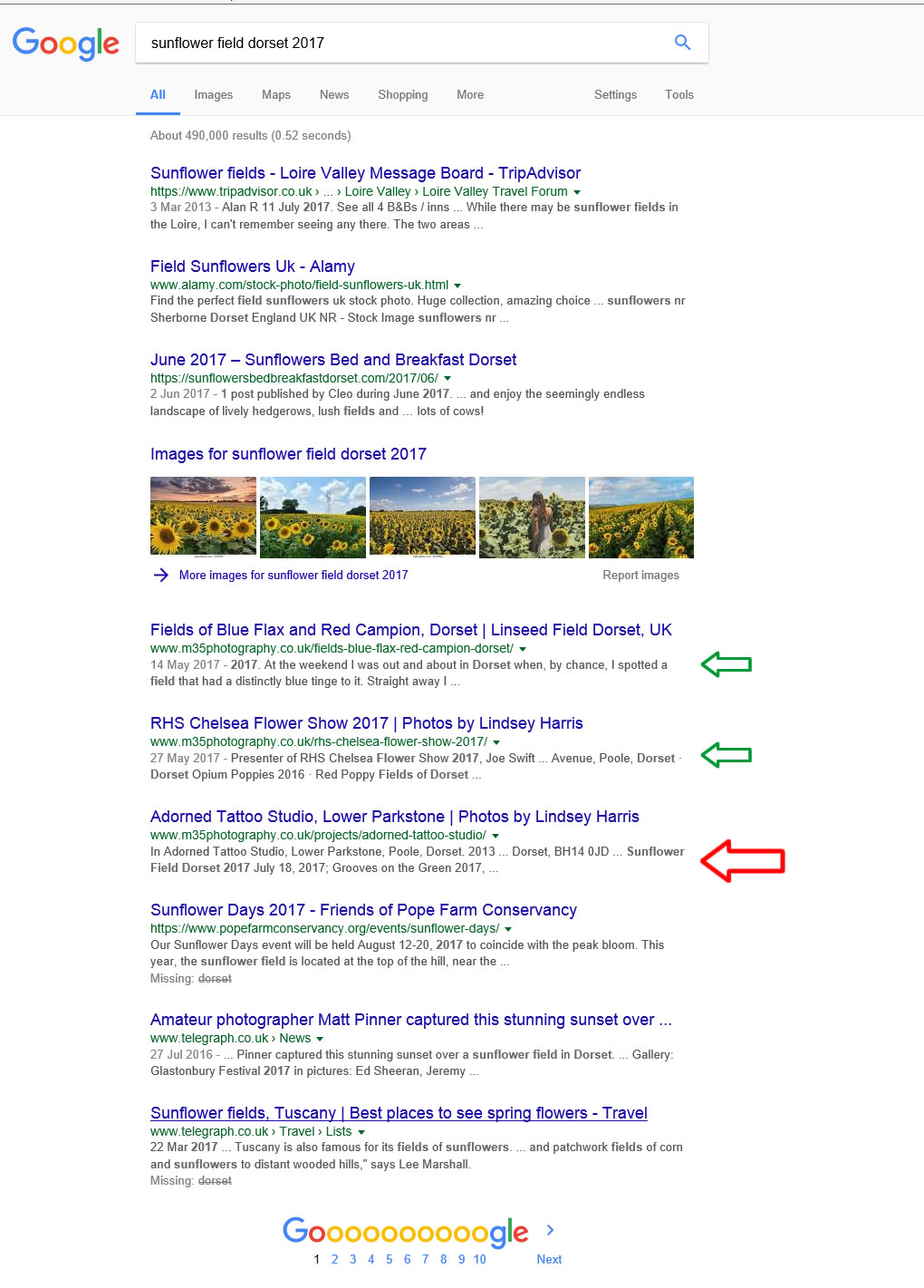 Google screenshot of sunflower search
